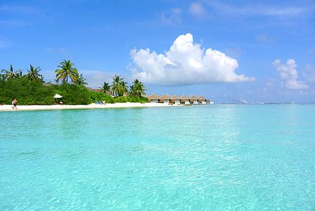 photography of beach resort at daytime