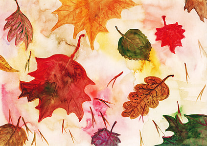 photo of maple leaf illustration