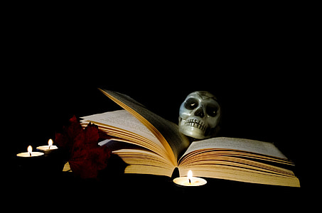 skull on opened book
