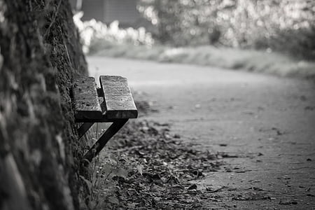 wall-mount bench near plants