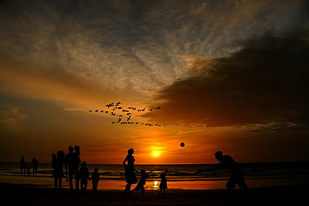 silhouette photo of people beside of beach during sunset