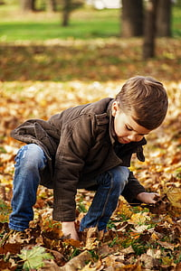 boy wearing brown jacket and blue jeans picking brown leaves