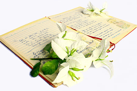 white flowers on top of notebook