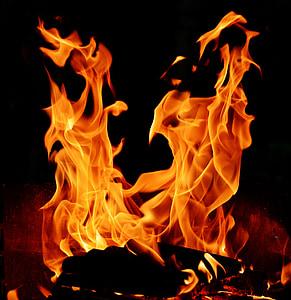 burning woods illustration