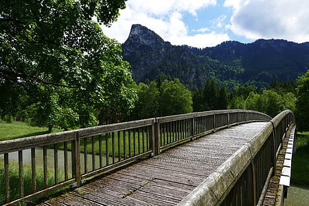 brown and gray bridge near tall green tree with mountain background