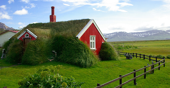 iceland, bordafjordur, roofing, grass