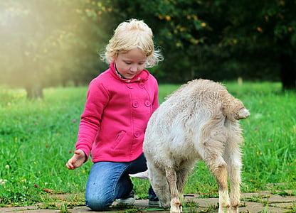 girl kneeling in front of white animal
