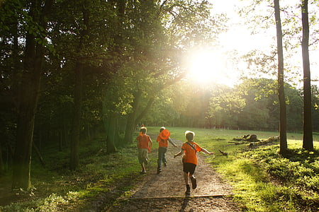 three children running on forest trail