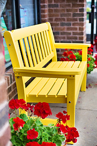 red potted geranium flowers beside yellow wooden bench