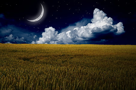 brown field with clouds and crescent moon