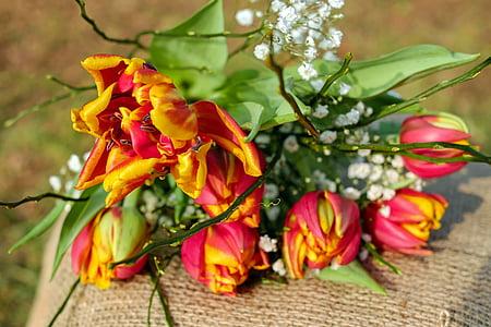 tilt shift lens photography of red and orange flowers