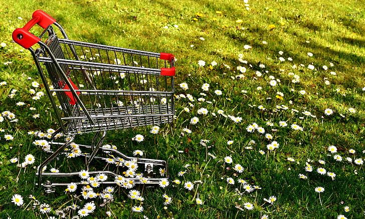 shopping, shopping cart, sale, meadow, daisy, consumerism