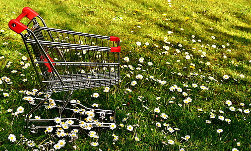 shopping, shopping cart, sale, meadow, daisy, consumerism