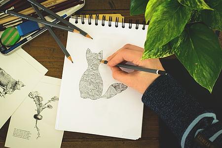 person draws a cat