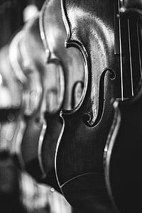 greyscale photo of violins