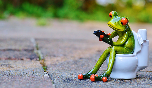 ceramic green frog sitting on toilet bowl figurine