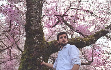 man wearing white dress shirt standing beside cherry blossom tree at daytime
