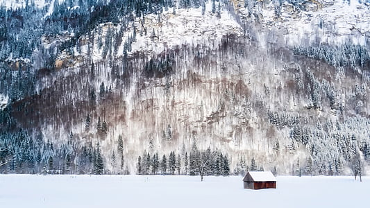 brown wooden house during winter