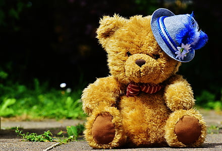 brown bear plush toy on concrete floor