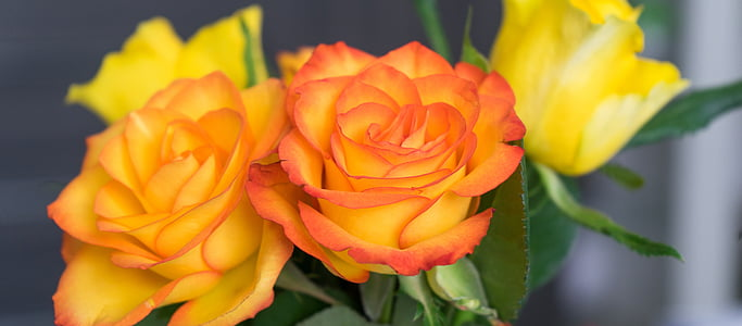 shallow photography of orange-and-yellow artificial flowers