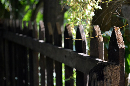 photography of brown wooden fence near tree at daytime
