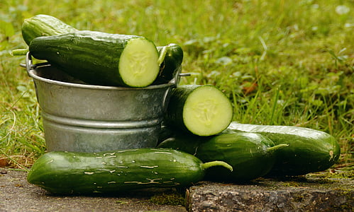 green cucumbers on gray stainless steel bucket