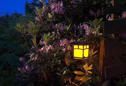 black and yellow steel lantern hanged near flowers