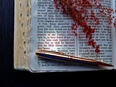 white Bible page