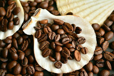 flat lay photography of coffee beans