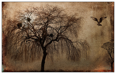 brown tree and bird painting