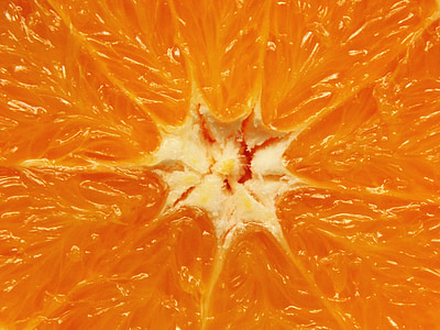 closeup photo of orange citrus fruit