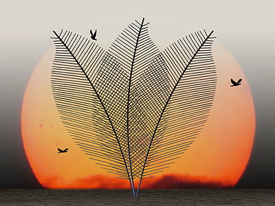 birds during sunset