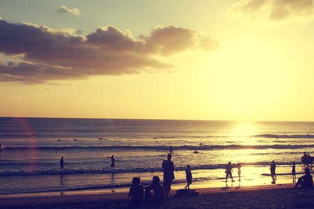 people beside seashore during golden hour