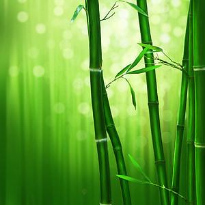 bamboo tree digital artwork