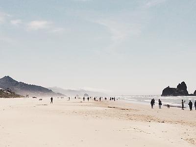 people at seashore