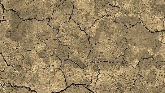 focus photo of dry soil