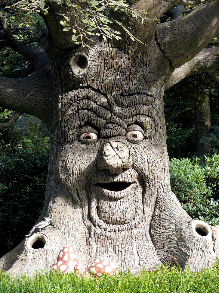 Royalty Free Photo Brown Tree With Face Artwork Pickpik