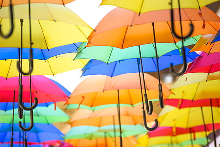 assorted-color hanging umbrella decor photo