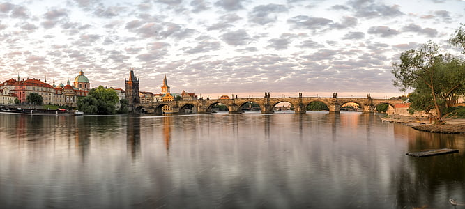 landscape reflective photography of concrete bridge