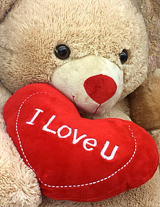 brown bear holding i love u pillow