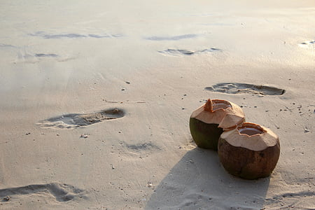 two open coconut fruits on seashore with human footsteps at daytime