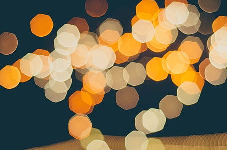 closeup photo of multicolored bokeh light