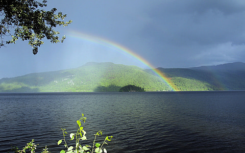rainbow over body of water