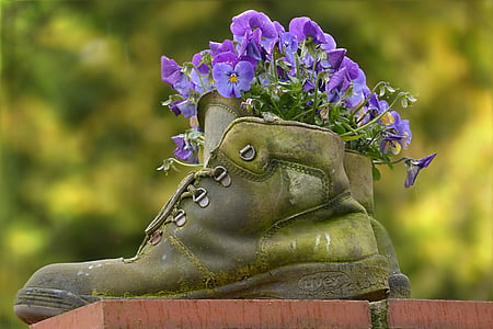 selective focus photography of purple flowers on green boot