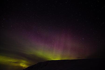 green and purple aurora