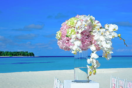 white and pink flowers decor