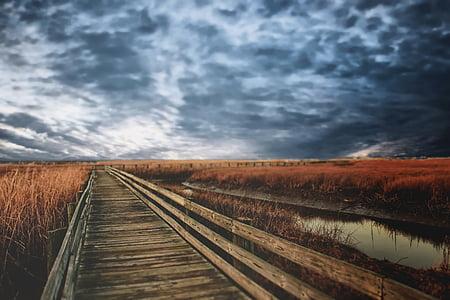 brown wooden bridge way beside body of water