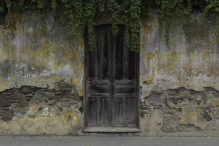 closed door with vines on top