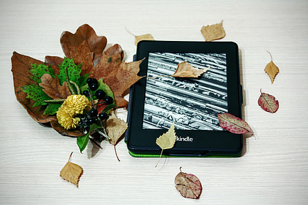 black Amazon kindle e-book reader with leaves