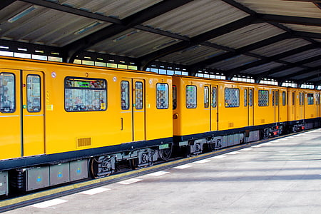 yellow and black trains